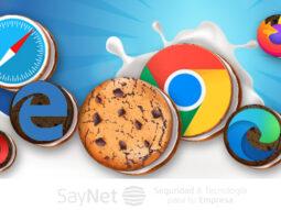 ¿Que son las cookies y cómo afectan nuestra privacidad?